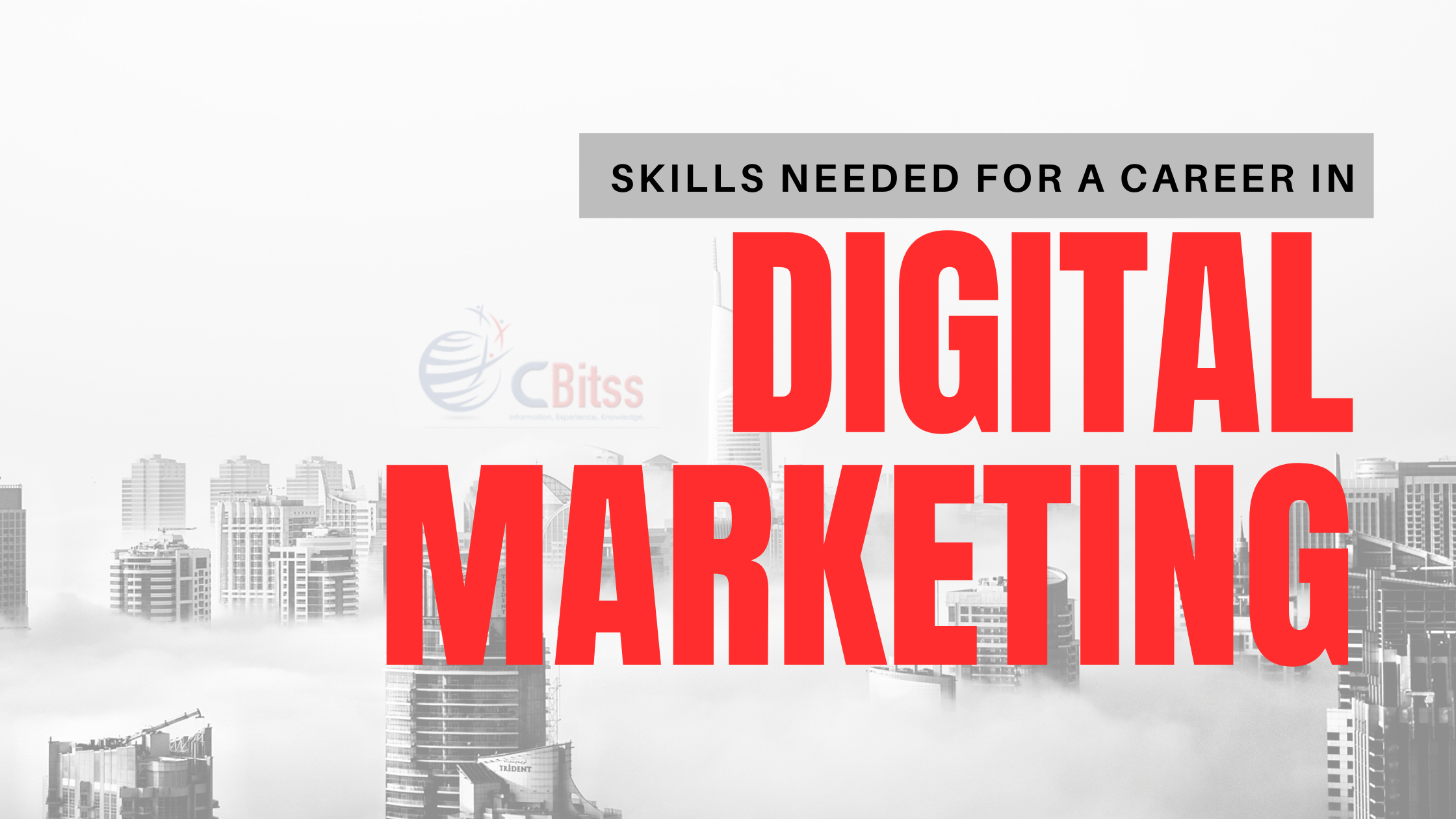 Skills-needed-to-make-a-career-in-digital-marketing.png
